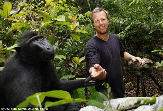 Macaco autore della Foto