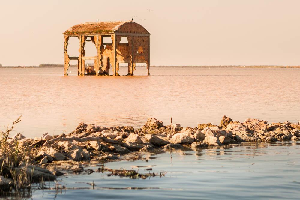 Escursione Fotografica sul Delta del Po in Barca